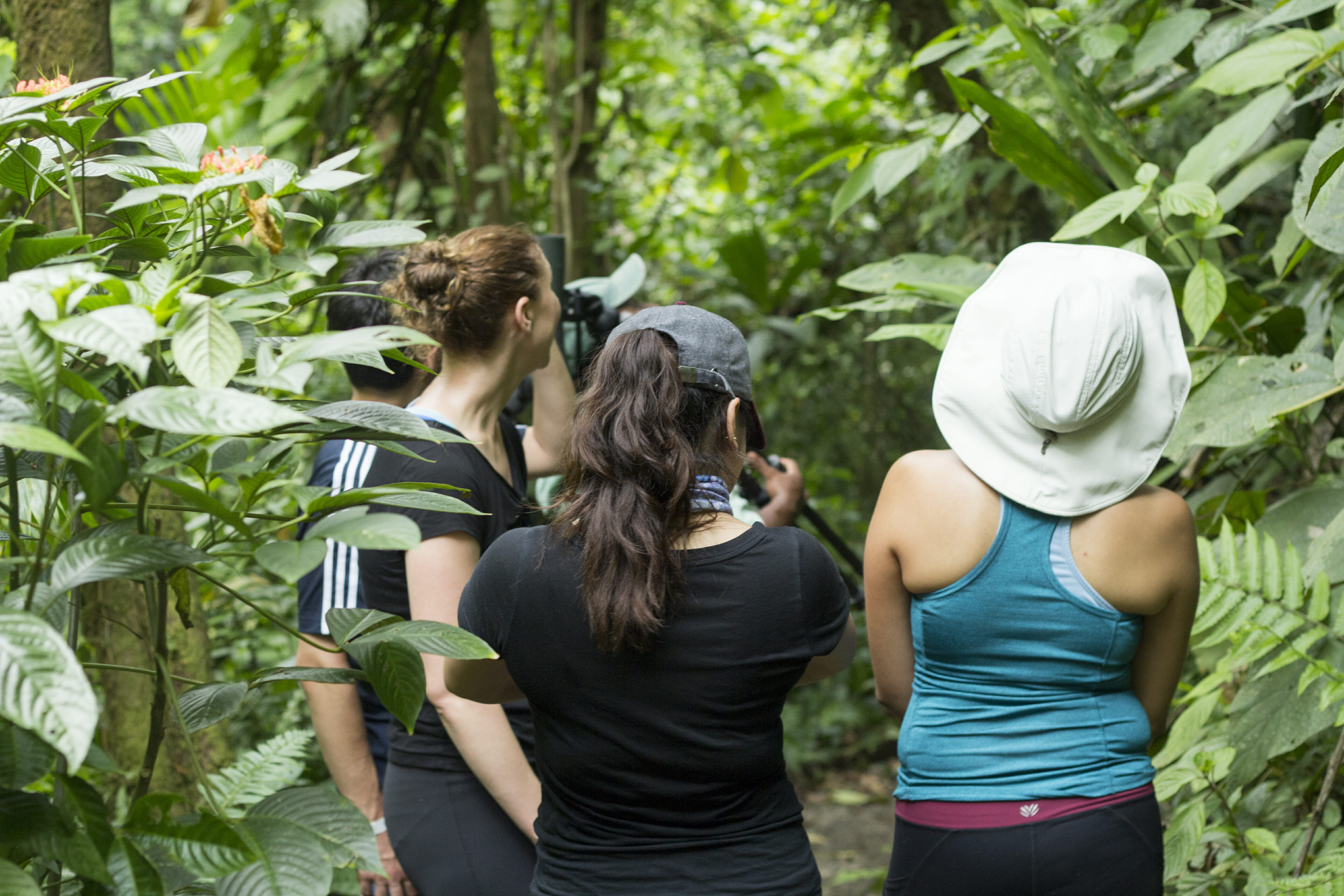 2 in 1 Hanging Bridges and La Fortuna Waterfall Tour