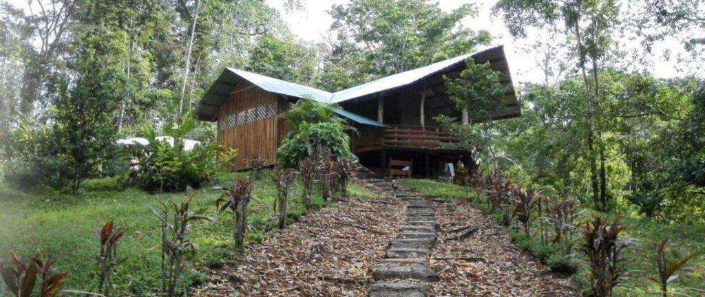 Alouatta Lodge